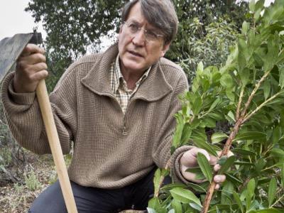 Joaquín Araújo: 'La siguiente amenaza de colapso es la crisis climática'