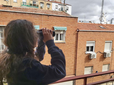 #AvesDesdeCasa: ciencia ciudadana en el confinamiento